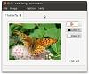 editor-image.jpg